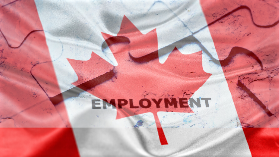 Canadian economy posts worst month for job losses in more than a decade