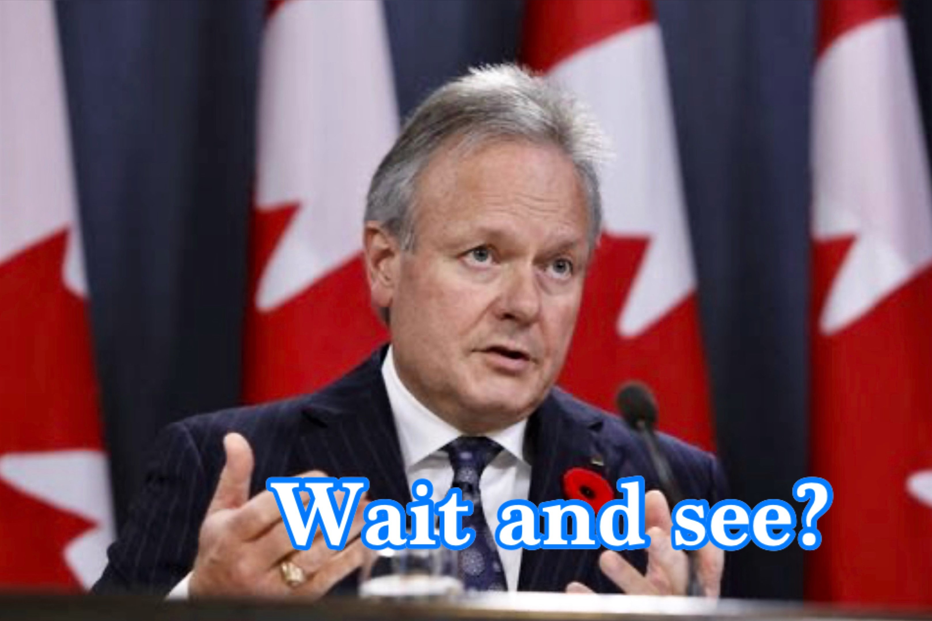 Bank of Canada to Leave Key Interest Rate Unchanged This Week: Survey